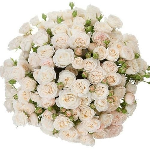 """Букет из кустовых роз """"Азалия"""""""