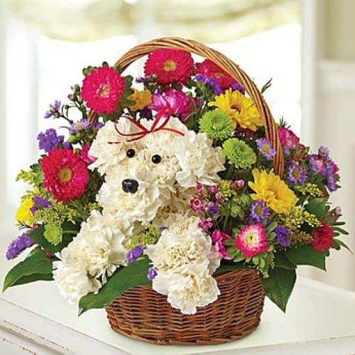 Корзина с цветами из гвоздики и хризантем