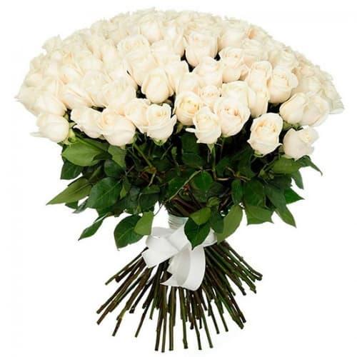 """Букет из 101 белой розы """"Диана"""""""