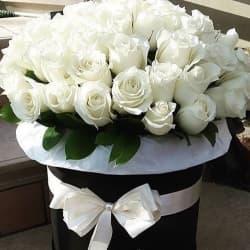 """41 белая роза в шляпной коробке """"Нежное облако"""""""